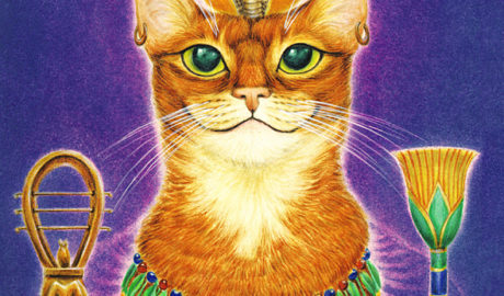 кот фараон