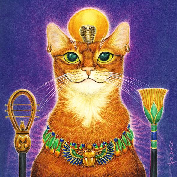 Картинка кот бог