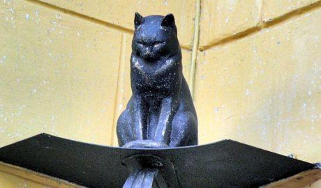 Кошки в жизни Ленинграда, во время Великой Отечественной Войны