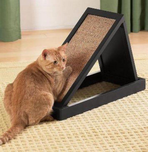 Отучаем кошку точить когти о мебель